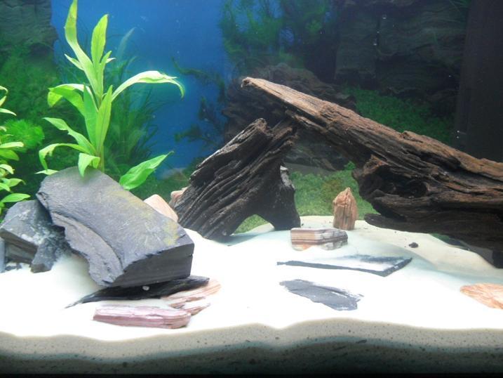 Moje Pierwsze Akwarium 125 L
